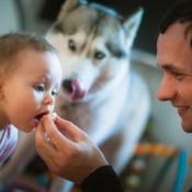 Ученые: домашние питомцы делают детей здоровее