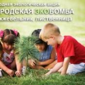 Городская ЭКОБомба Дзержинска обрела официальную поддержку