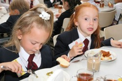 Случаи мошенничества со школьными картами питания зарегистрированы в Нижнем Новгороде